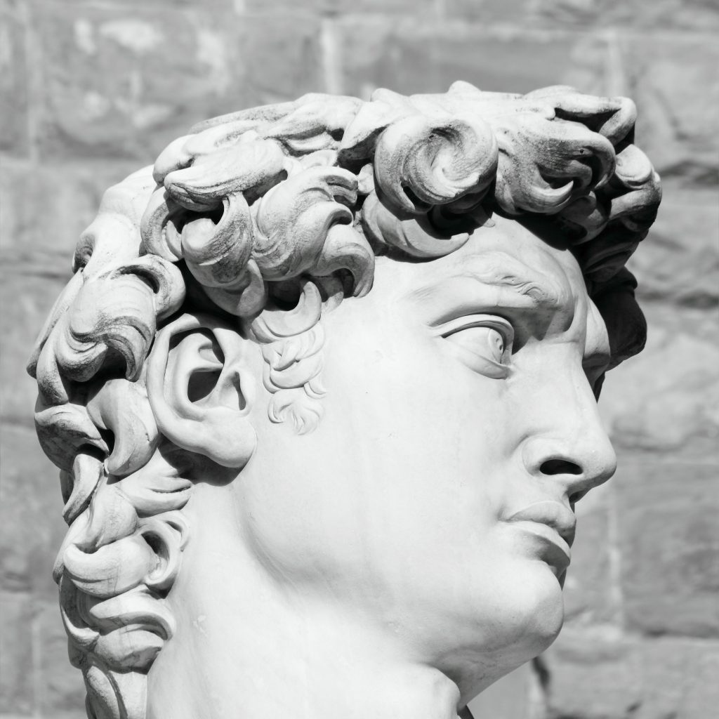 black and white profile of famous statue of David by Michelangelo, Florence,Tuscany, Italy, Europe